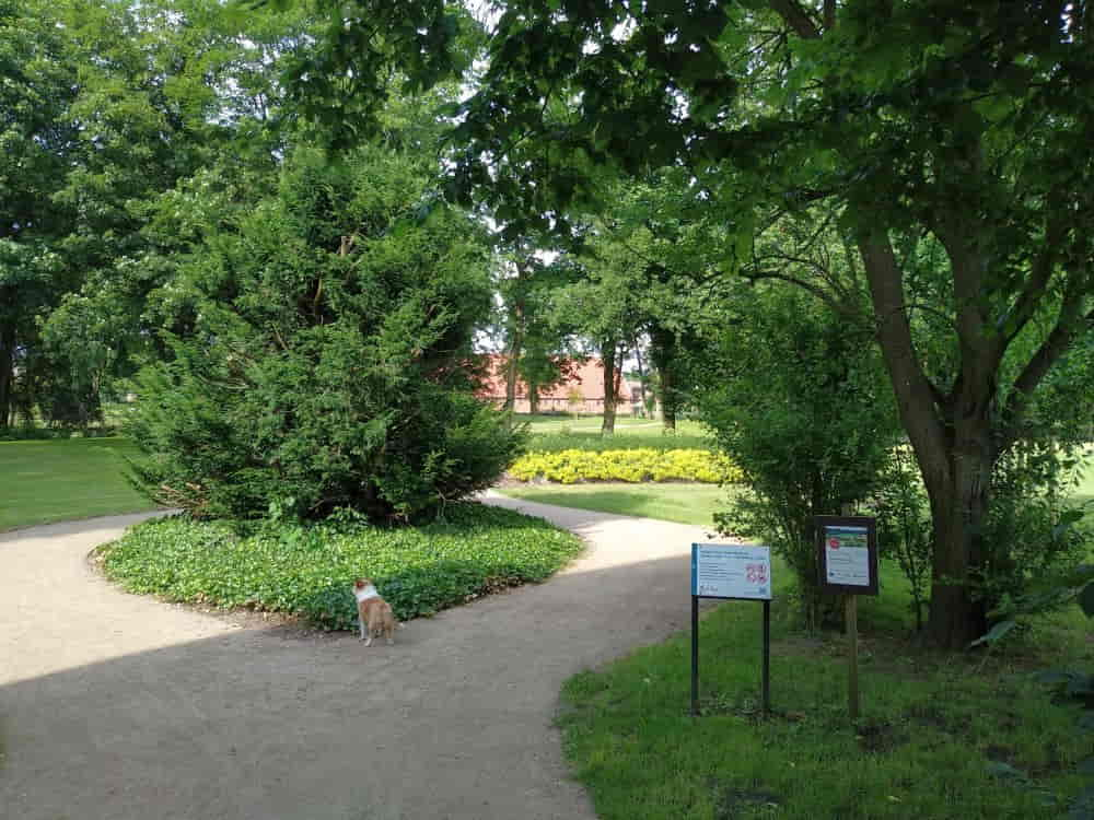 Slingertuin, Wandelgarten